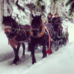 Giro in Troika tra la neve