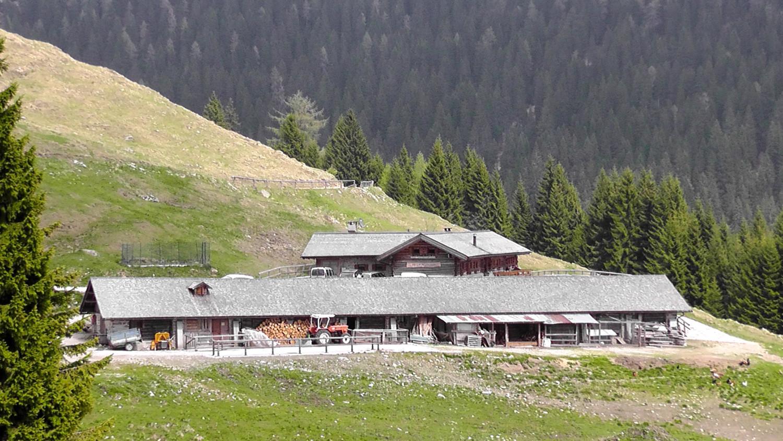 Malga lozen il sapore della montagna il blog di hotel luis - Riscaldare velocemente casa montagna ...
